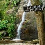 Balade familiale à la Cachoeira dos Primatas