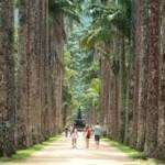 Visite guidée du Jardin Botanique
